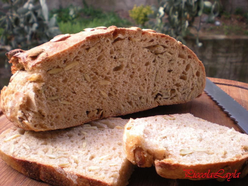 pane semi di zucca2 (6)