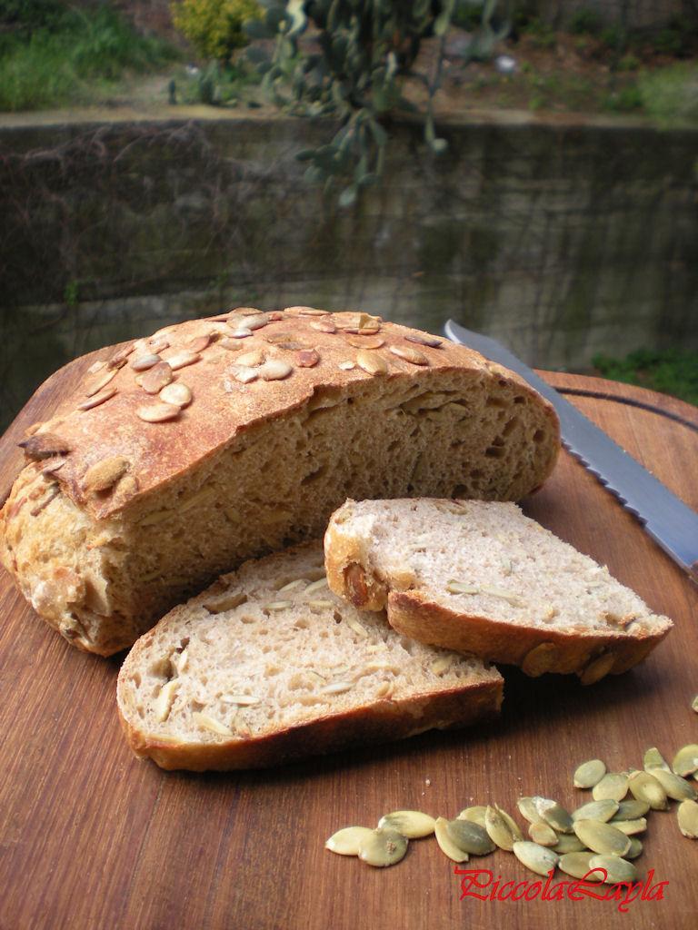 pane semi di zucca2 (9)