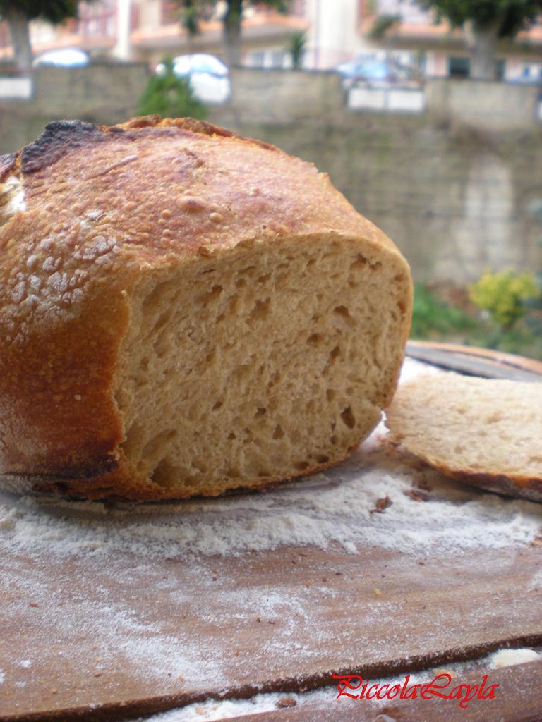 pane senza impasto semintegrale (12)
