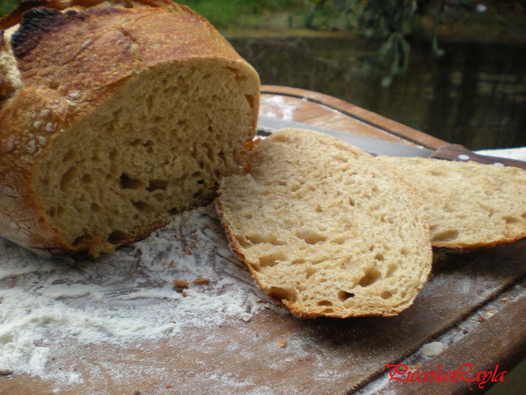pane senza impasto semintegrale (13)