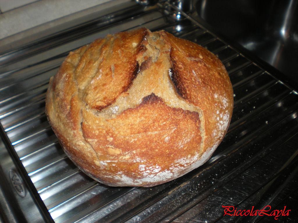 pane senza impasto semintegrale (3)