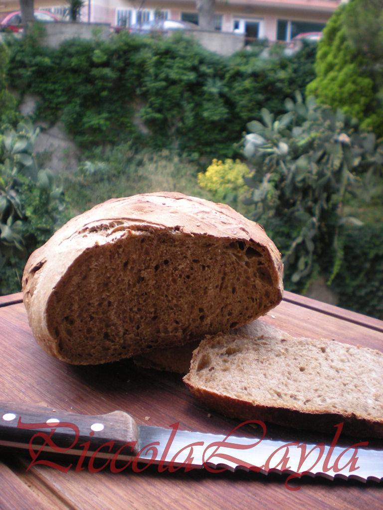 Pane di farina mista