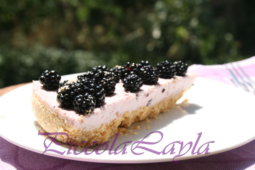 torta more e yogurt (20)b