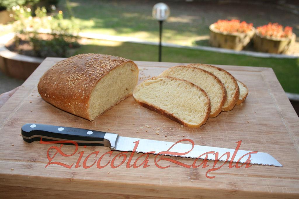 pane di semola (10)