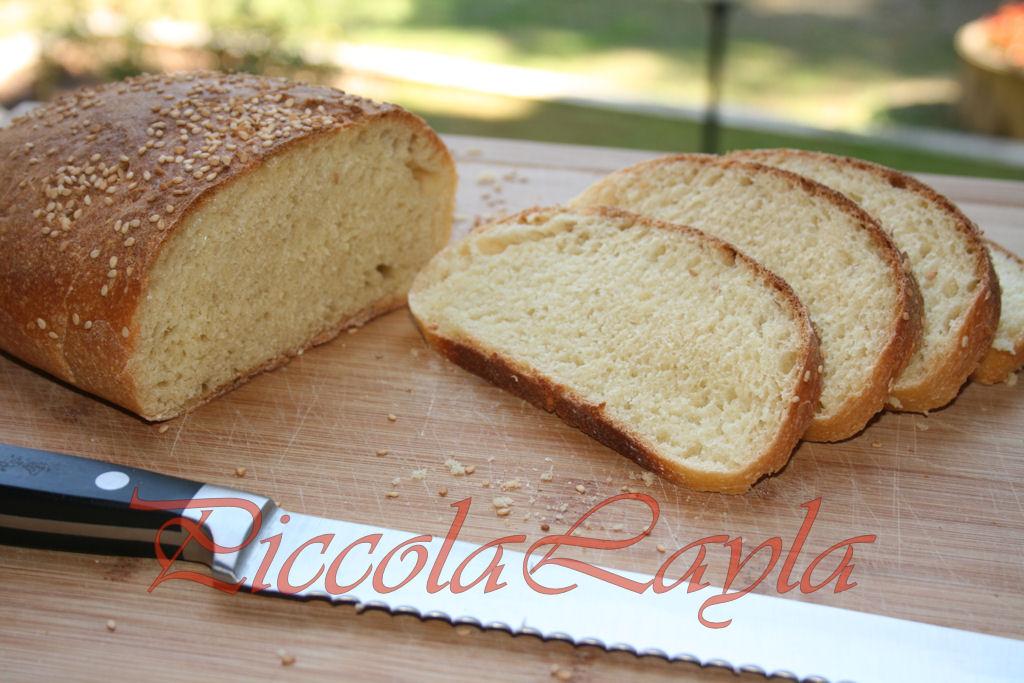 pane di semola (13)