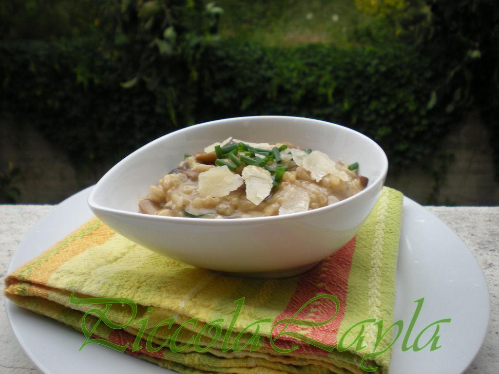 risotto funghi e cipollina (1)b