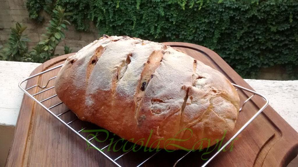 Pane olive e pasta madre  (23)b