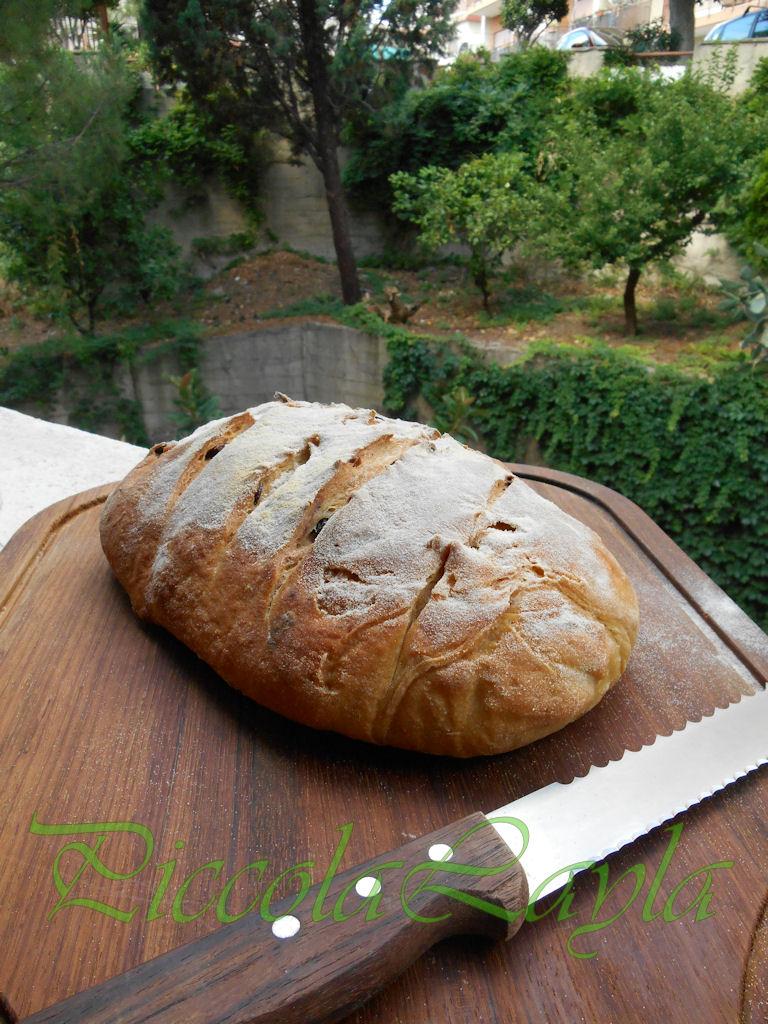 Pane olive e pasta madre  (28)b