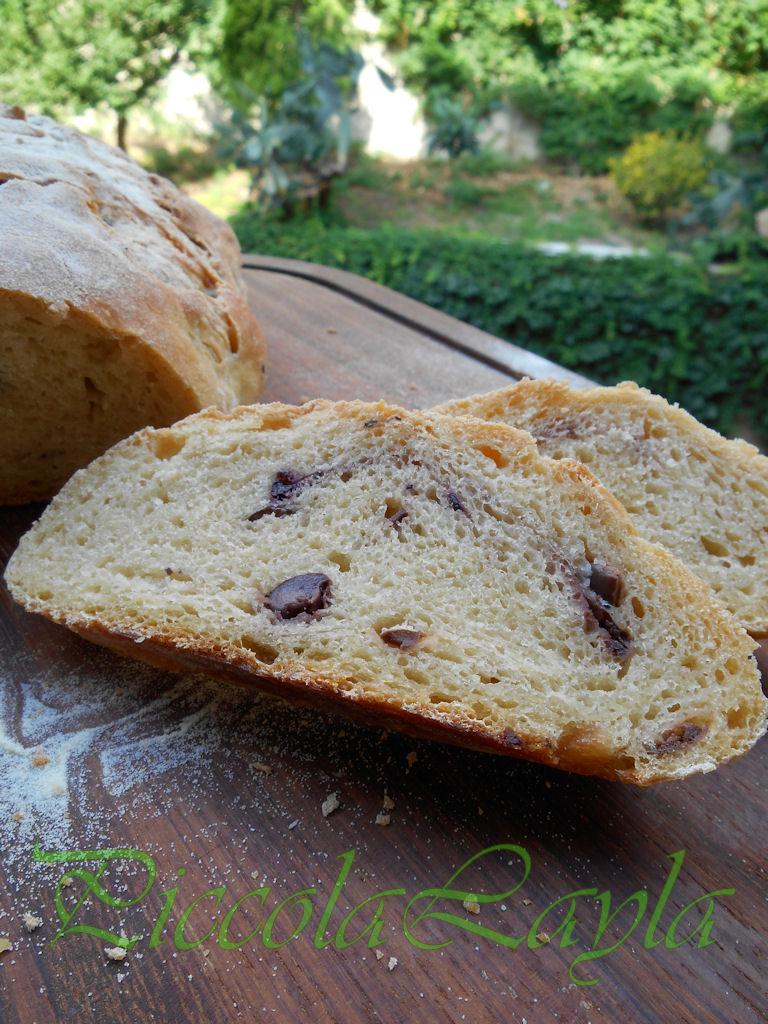 Pane olive e pasta madre  (32)b