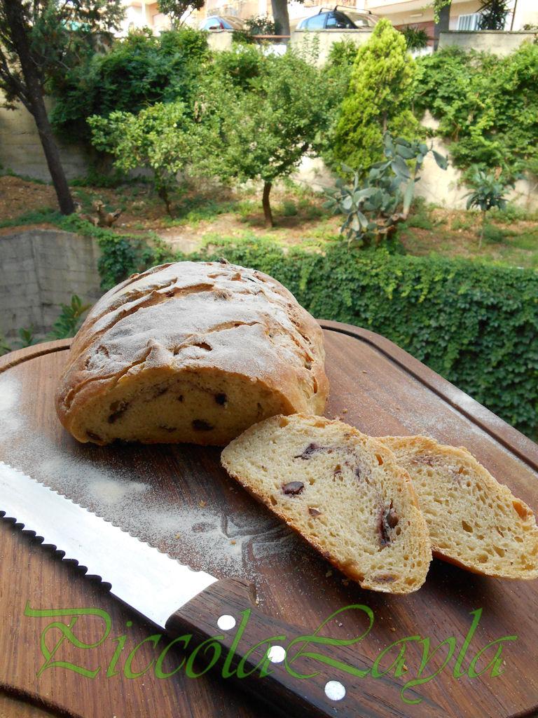 Pane olive e pasta madre  (36)b