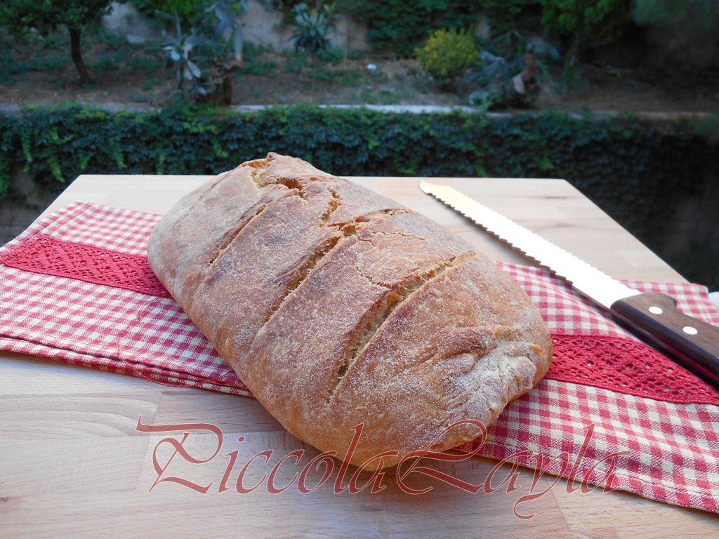 pane pasta madre (14)b