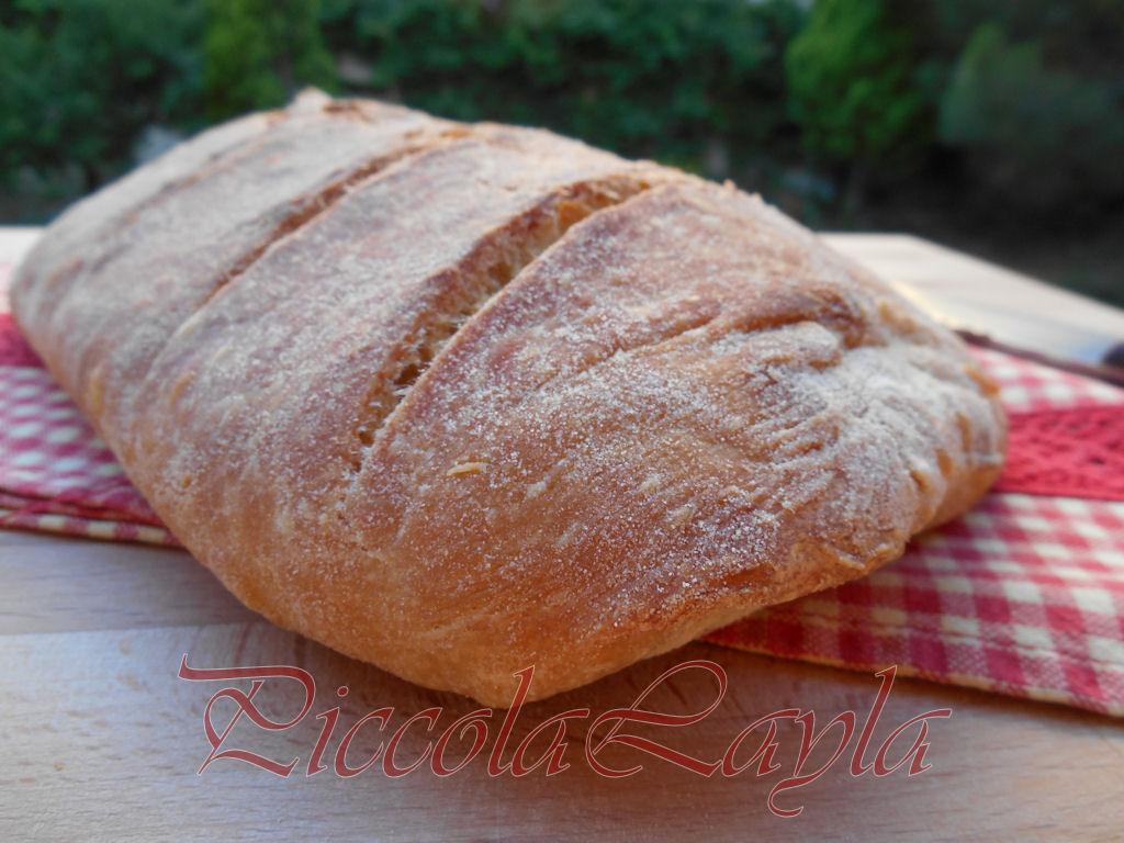 pane pasta madre (16)b