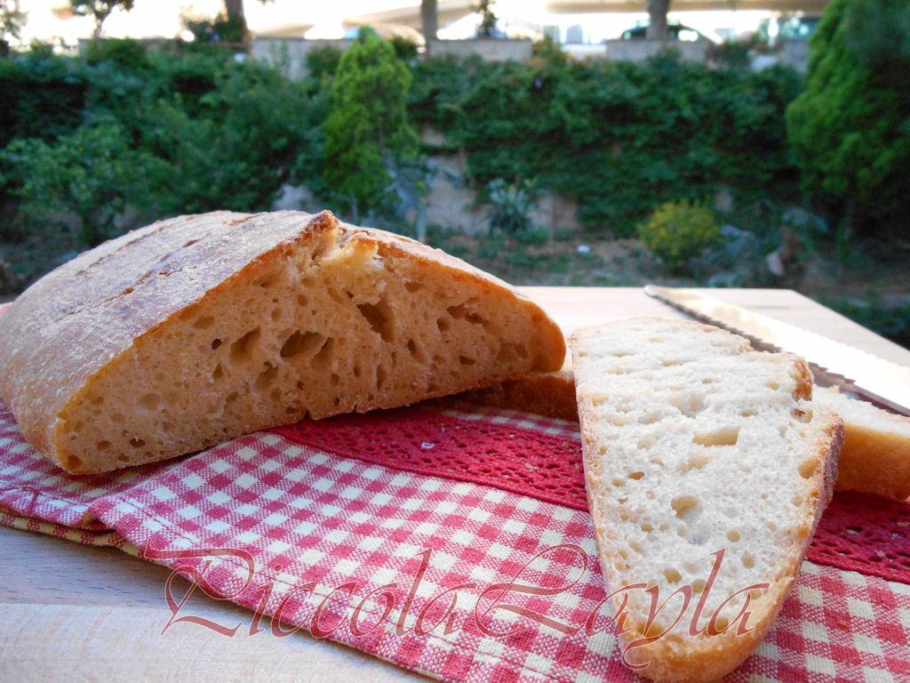 pane pasta madre (19)b