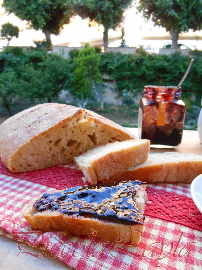 pane pasta madre (41)b