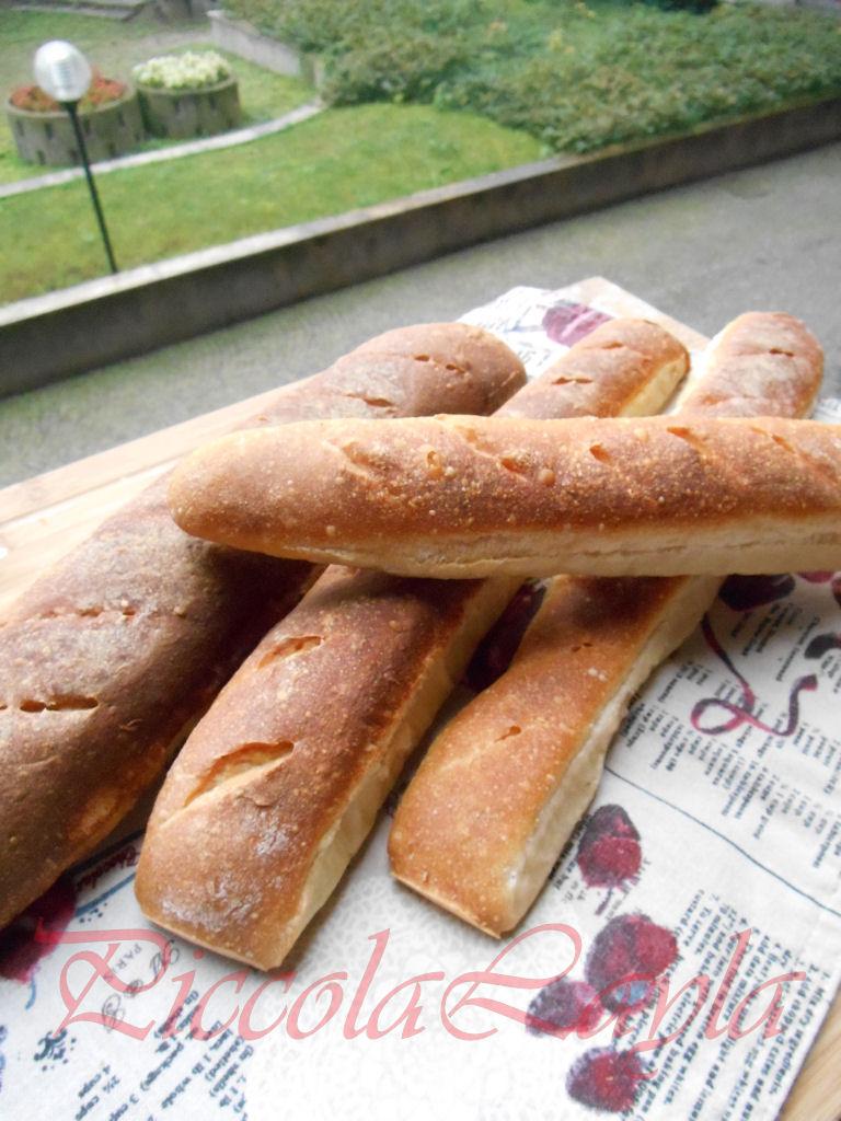 baguette francesi (14)b