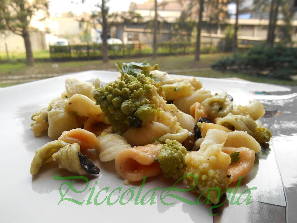 broccolo romanesco (10)b
