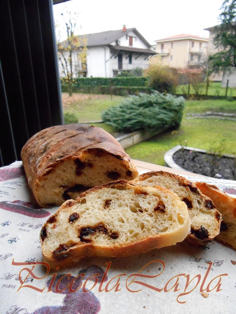 pane e pomodori secchi (18)b