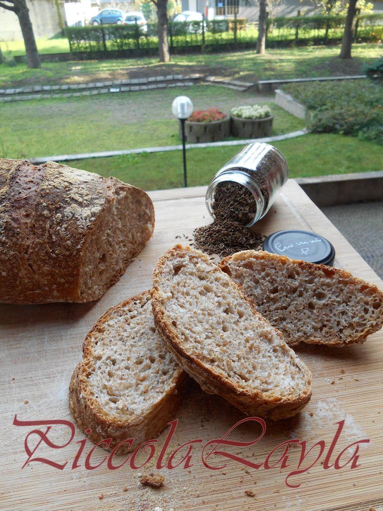 Pane integrale al cumino (16)b