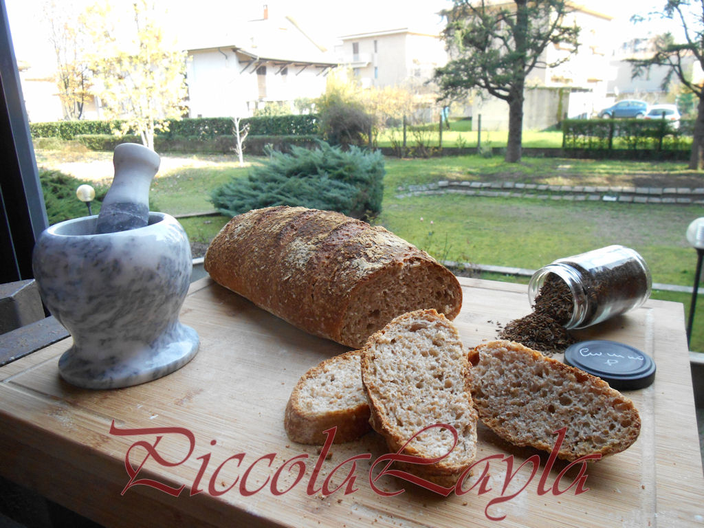 Pane integrale al cumino (9)b