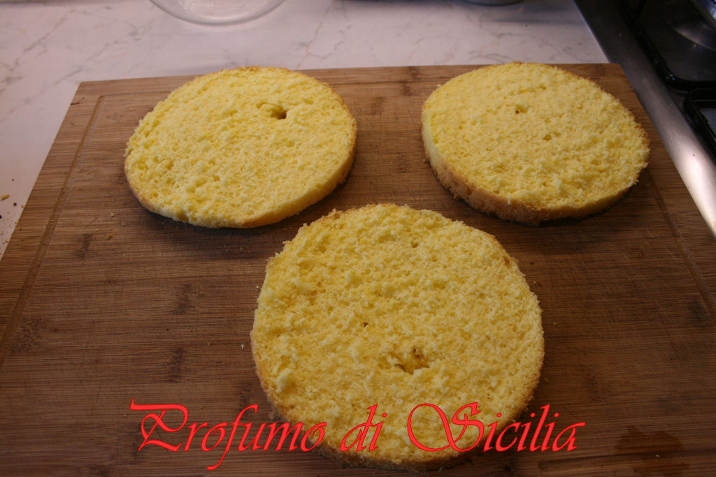 mimosa (5)b